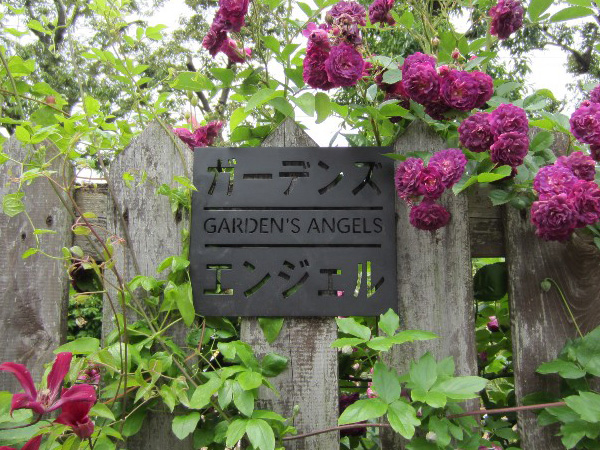 /NHK趣味の園芸施工例