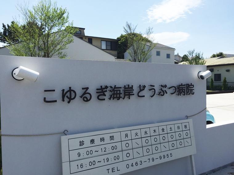 神奈川県中郡/こゆるぎ海岸どうぶつ病院様施工例